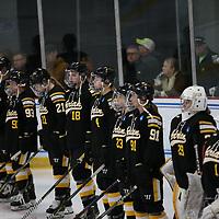 NCAA 2019 Third Place - Women's Ice Hockey: University of St. Thomas (Minnesota) Tommies vs. Adrian College Bulldogs