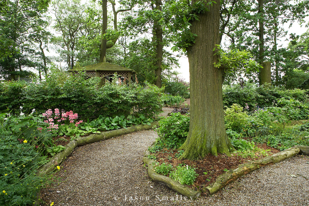 a path through a woodland garden bounded by hosta beds