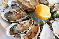 Oysters, Sofitel Dietethique..photo by Owen Franken for the NY Times..July 7, 2008..