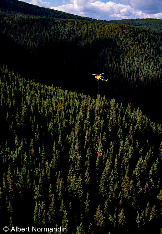 Helicopter Working, Peace River Country British Columbia, Canada