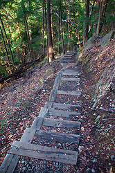 Stairs on Reid Harbor Lookout Trail, Stuart Island, Washington, US