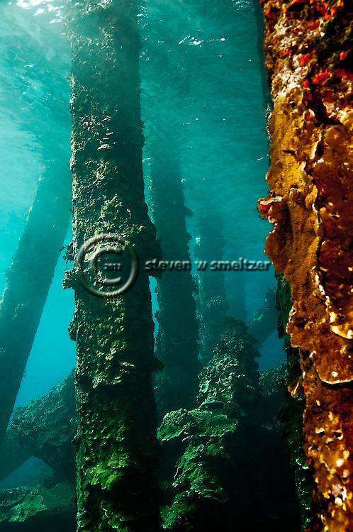 Atlantis found, Mala Pier, Maui Hawaii