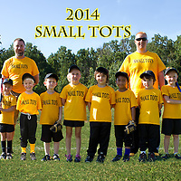 6-24-14 Small Tots Parent Pitch 2014