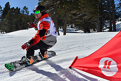 Europa Cup Finals Banked Slalom, BARATTERO Patrice, FRA at the 2016 IPC Snowboard Europa Cup Finals and World Cup