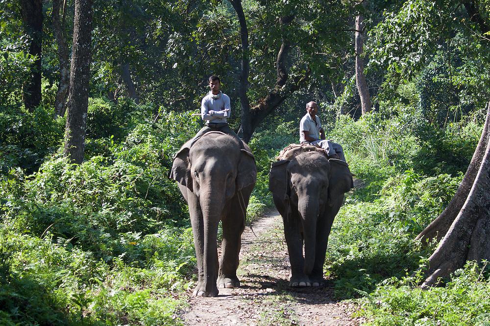 Park South Nepal