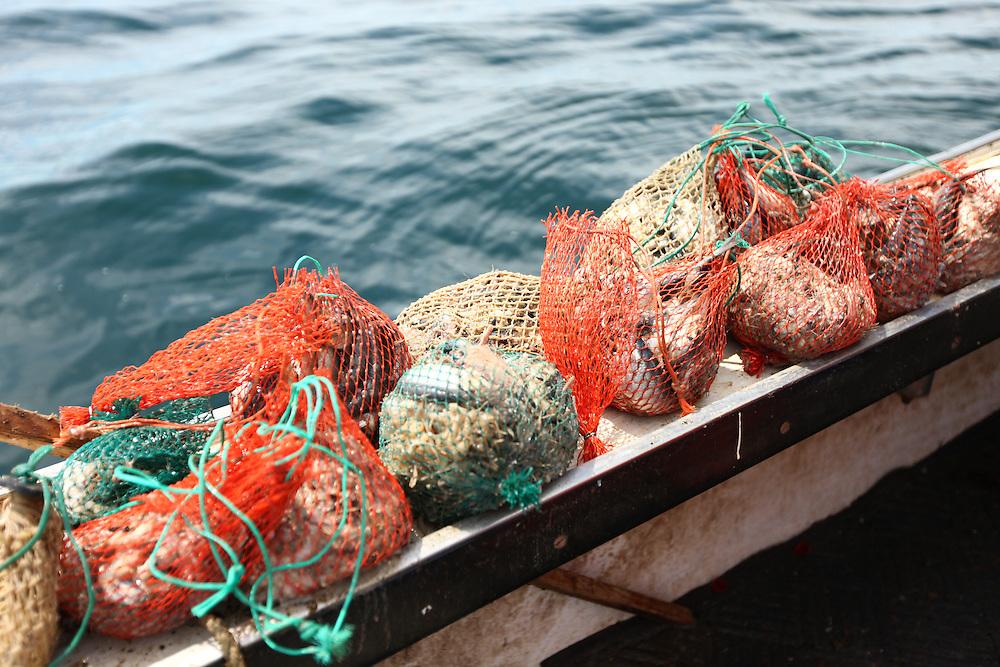 Lobsterwoman Melanie Kratovil fishes off the coast of Biddeford, Maine in August 2011.