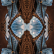 Photographic series of digital computer art from an image of profile of Avator Nevtrir.<br />