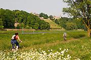 Elbeufer, Elbwiesen, Fahrradweg an der Elbe, Elbschlo¬sser,  Dresden, Sachsen, Deutschland.|.Dresden, Germany,  river Elbe shore, Elbe castles