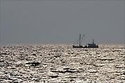 Nederland, Urk, 19-2-2015Vissersschip, de WON 50, won50, won-50 uit Wonsradeel vaart op het IJsselmeer.Foto: Flip Franssen/Hollandse Hoogte