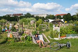 Community garden project at Tempelhof Park former airport in Berlin Germany