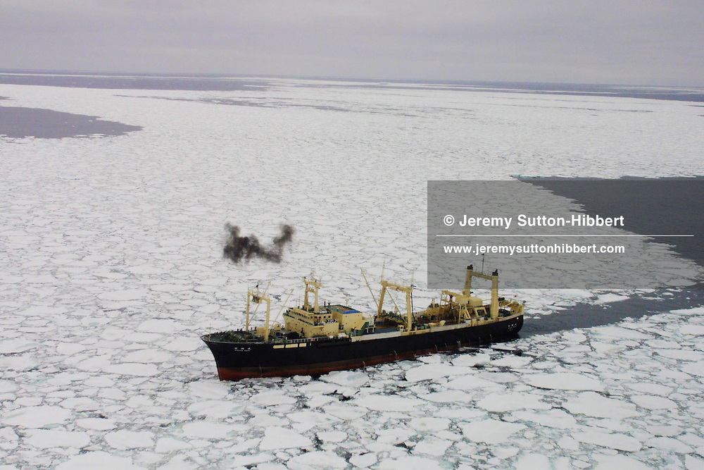 THE JAPANESE WHALE FACTORY SHIP THE 'NISSHIN MARU' NEGOTIATES THE ICE FLOWS OF THE SOUTHERN OCEAN WHILST RENDEVOUZING WITH A WHALE CATCHER SHIP.