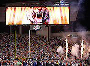 A tiger is shown on the Paul Brown Stadium scoreboard in this general view, wide angle photograph of the stadium interior taken during pregame player introductions with a smoke and fire display used before the Cincinnati Bengals NFL AFC Wild Card playoff football game against the Pittsburgh Steelers on Saturday, Jan. 9, 2016 in Cincinnati. The Steelers won the game 18-16. (©Paul Anthony Spinelli)