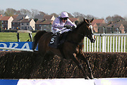 BORN SURVIVOR (5) ridden by Harry Skelton and trained by Dan Skelton winning The Listed (Class 1) Hillhouse Quarry Handicap Steeple Chase over 2m 4f (£50,000)  during the Scottish Grand National, Ladies day at Ayr Racecourse, Ayr, Scotland on 12 April 2019.