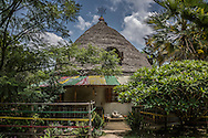 One of the Sidamo-style huts in the green oasis that is Zion Train Lodge, run by a Rastafarian couple.  Shashemene, Ethiopia.