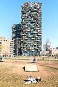 Milan, architecture in Porta Nuova, bosco verticale