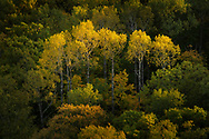 Autumn colors in the Keweenaw Peninsula