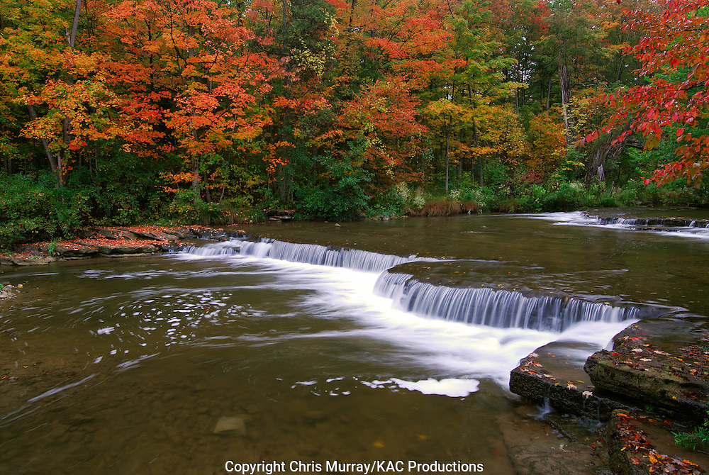 Autumn along Chittenango Creek, Chittenango Falls State Park, New York, USA