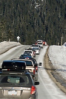 Cars and spectators line the road to the World Cup Ski Jumping competition at Whistler Olympic Park on Sunday January 25, 2009