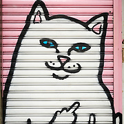 Street art image of cat on a door in Kowloon, Hong Kong