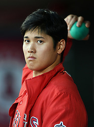 June 6, 2018 - Anaheim, CA, U.S. - ANAHEIM, CA - JUNE 06: Los Angeles Angels of Anaheim pitcher Shohei Ohtani (17) in the dugout during a game against the Kansas City Royals played on June 6, 2018 at Angel Stadium of Anaheim in Anaheim, CA. (Photo by John Cordes/Icon Sportswire) (Credit Image: © John Cordes/Icon SMI via ZUMA Press)