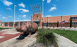 Sept. 04, 2017 - Hutto, Texas, U.S. -  In 1915, according to local legend, a hippopotamus got loose from a circus train which had stopped in Hutto, Texas.  The town soon afterwards adopted the hippo as its mascot, and now, 100 years later, decorated concrete hippos can be spotted outside of many of the city's homes and businesses.(Credit Image: © Brian Cahn via ZUMA Wire)