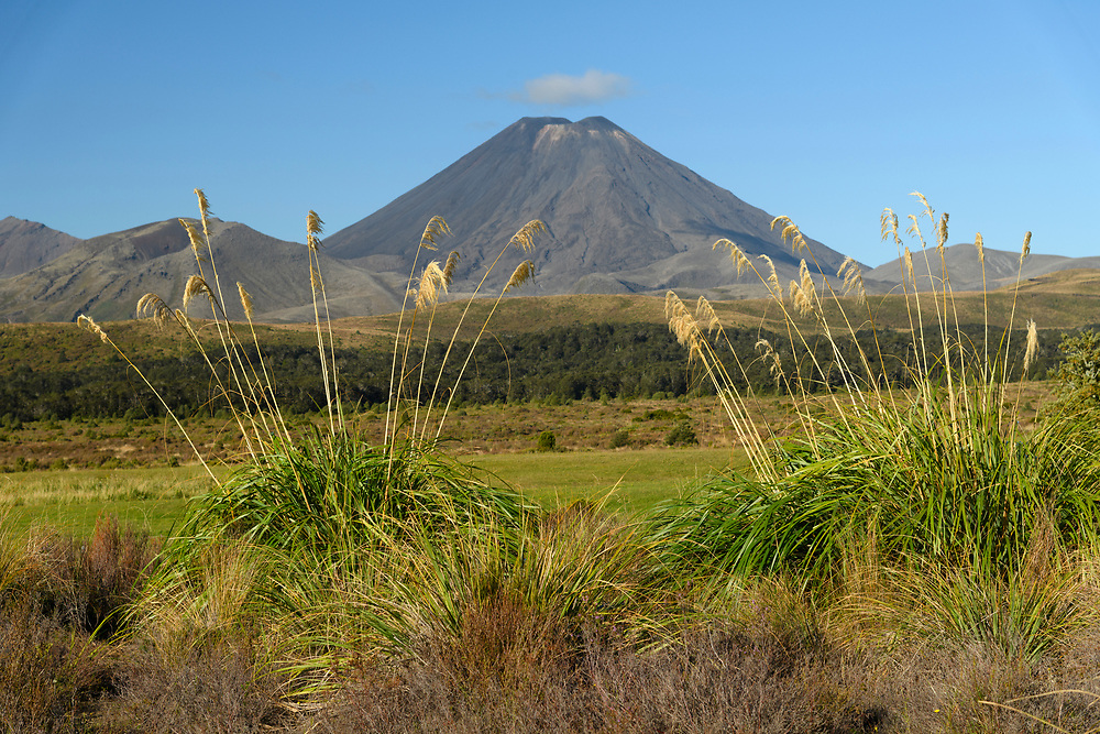 Oceania, New Zealand, Aotearoa, North Island, Tongariro National Park, Mount Tongariro