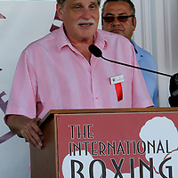 Inductee and broadcaster Al Bernstein during the 23rd Annual International Boxing Hall of Fame Induction ceremony at the International Boxing Hall of Fame on Sunday, June 10, 2012 in Canastota, NY. (AP Photo/Alex Menendez)