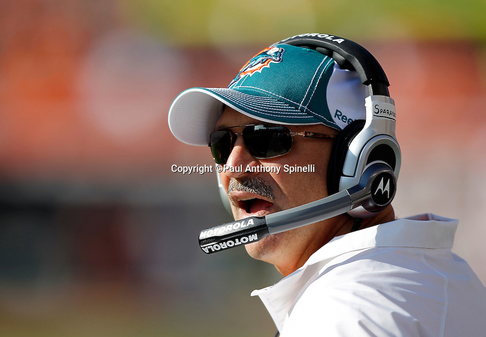 Miami Dolphins Head Coach Tony Sparano call out during the NFL week 8 football game against the Cincinnati Bengals on Sunday, October 31, 2010 in Cincinnati, Ohio. The Dolphins won the game 22-14. (©Paul Anthony Spinelli)