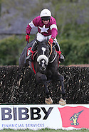 Punchestown Festival 290415