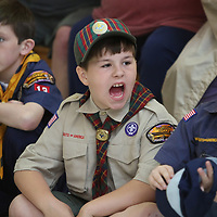 Carter Bell, 10 center, cheers at the district level Pinewood Derby Saturday at the Mall at Barnes Crossing food court.    Winners of today will advance to the Yocona Area Council Pinewood Derby at the Tupelo Auto Museum next month