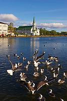Islande, Reykjavik, eglise Frikirkjan et le lac Tjornin // Iceland, Reykjavik, Frikirkjan church along Tjornin Lake