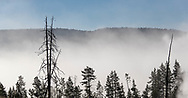 Steam rises from thermal features in Yellowstone National Park on July 1, 2017.