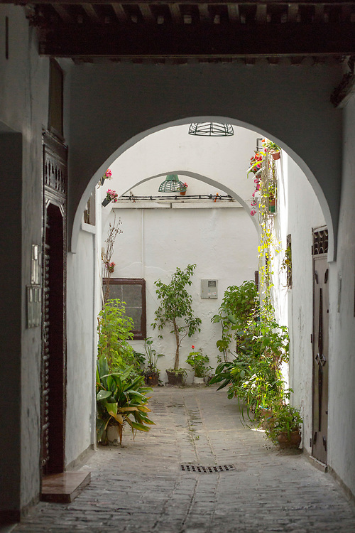 TETOUAN, MOROCCO - 6th April 2016 - Backstreet alleyway with colourful plant pots in the Tetouan Medina, Rif region of Northern Morocco.