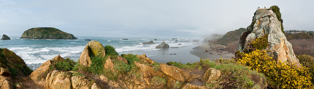 Sea stacks, Harris Beach State Park, on US Highway 101, north of Brookings, Curry County, Oregon, USA. The Pacific Ocean carves sea stacks from coastal cliffs. Panorama stitched from 5 photos.
