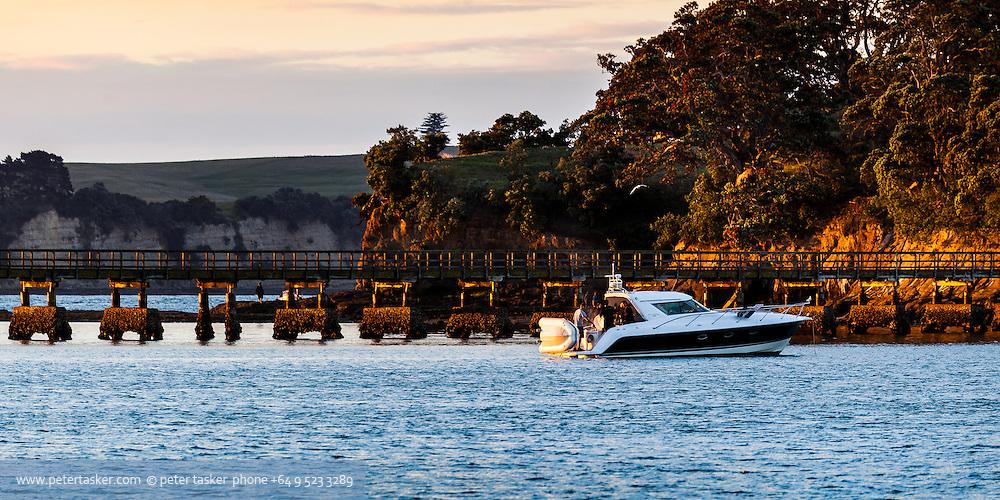 Early evening barbeque on a beautiful Genesis launch anchored in Whalf Bay, (Waihaorangatahi Bay), Motuihe Island, Hauraki Gulf, Auckland.