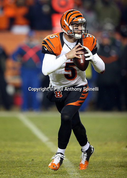 Cincinnati Bengals quarterback AJ McCarron (5) rolls to his right while looking to pass for a gain of 12 yards and a first down at the Denver Broncos 10 yard line in the second quarter during the 2015 NFL week 16 regular season football game against the Denver Broncos on Monday, Dec. 28, 2015 in Denver. The Broncos won the game in overtime 20-17. (©Paul Anthony Spinelli)