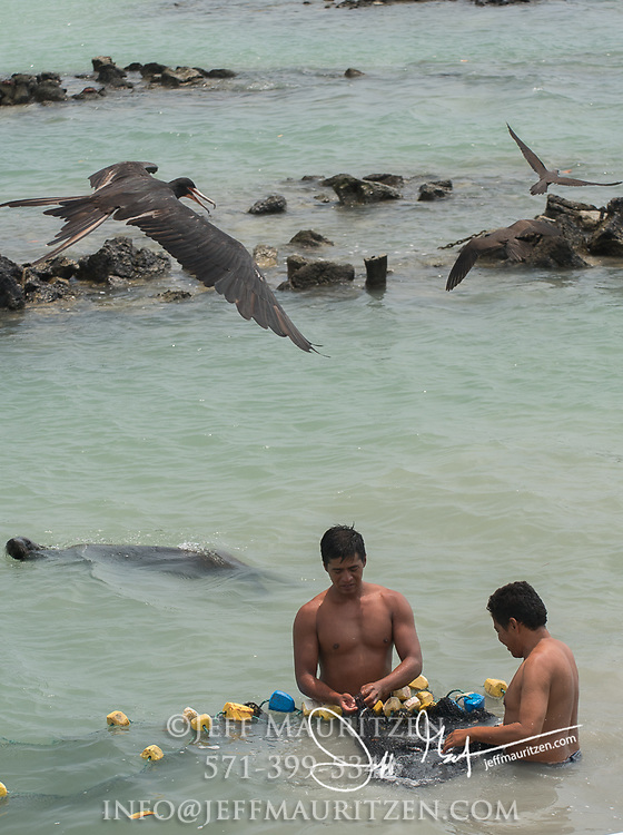 2 men use a net to try to catch mullet in Puerto Ayora, a small town on Santa Cruz island in the Galapagos.