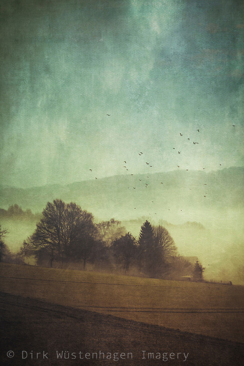Morning fog in a rural area - textured photograph<br /> Redbubble prints: http://www.redbubble.com/people/dyrkwyst/works/21777773-hidden-houses<br /> <br /> Society6 products: https://society6.com/product/hidden-houses_print#1=45