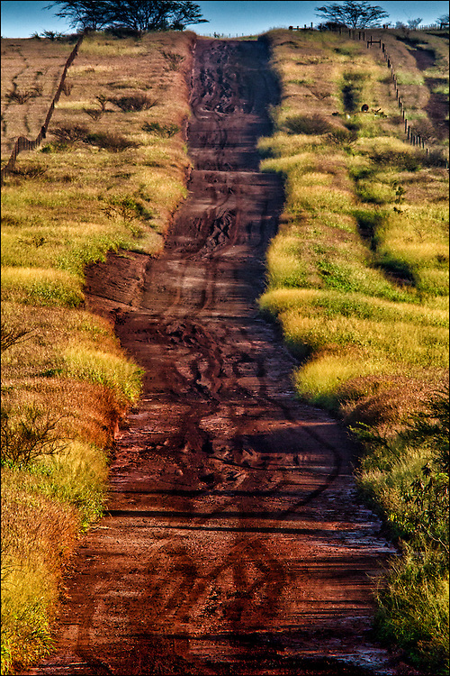 Red dirt road to Hale o Lono. Molokai, Hawaii