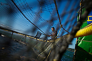 Marco Antonio Torres, 27, maintains one of Regal Springs' tilapia modules on Lake Yojoa in the northwestern part of Honduras. Regal Springs is one of the largest producers of aqua farmed tilapia in the world. Each module has two cages, that hold approximately 55,000 fish each.