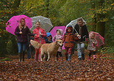 OCT 29 2014 Autumn Half-Term Weather Pictures