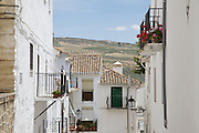 Andalucia, towns, countryside, villas for El Carligto