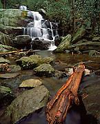 Waterfall in Smokeys National Park