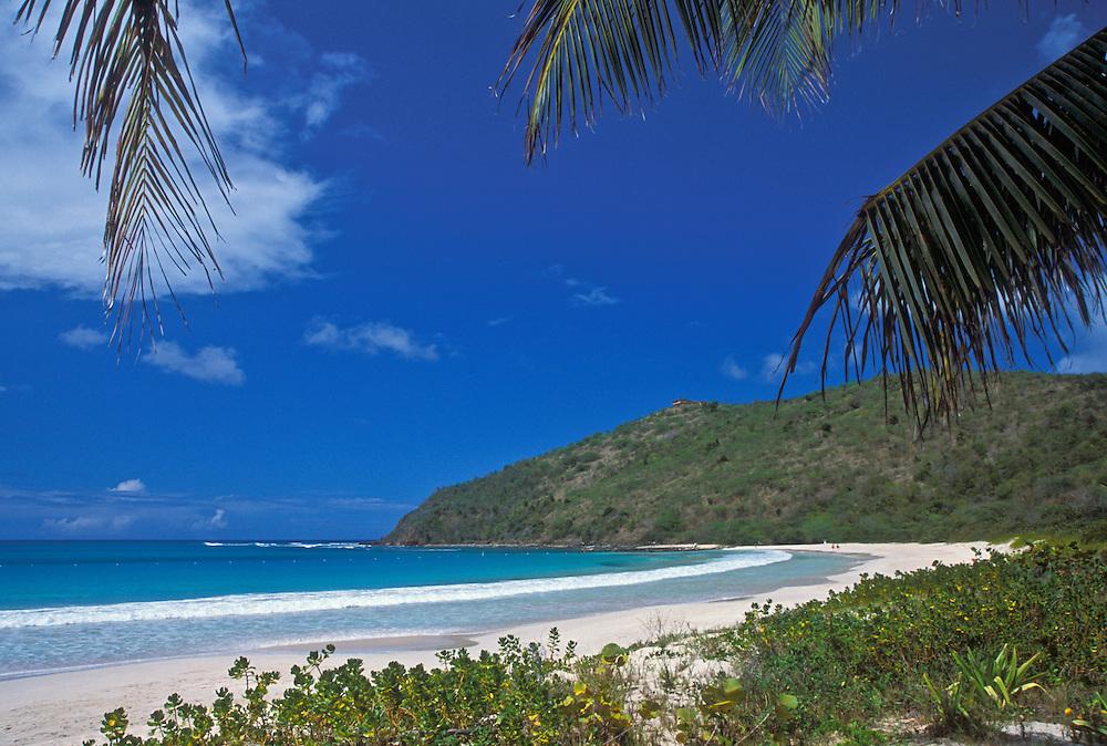 Bahia des Tortugas beach and bay; Culebra Island, Puerto Rico.