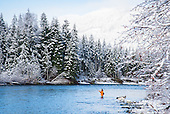 Vancouver Island Winter Steelhead