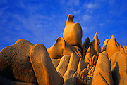Image of rocks on the beach in Cabo San Lucas, Baja California Sur, Mexico