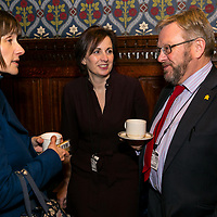 """Marie Curie Event;<br /> """"Dementia and end of Life"""" Dr Liz Sampson;<br /> Jubilee Room, House of Commons;<br /> 17th January 2018.<br /> <br /> © Pete Jones<br /> pete@pjproductions.co.uk"""
