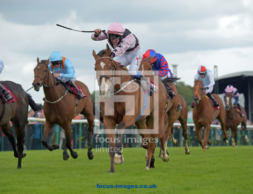 A preview of this weekend's favourite runners. <br /> Picture by Martin Lynch/Focus Images Ltd 07501333150<br /> 16/09/2016<br /> <br /> Original caption:<br /> Centre is Hoof It with N Evans 1st in Handicap stakes at Haydock 2-7-16.