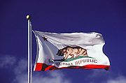 "California State Flag. The Historic Bear Flag was raised at Sonoma on June 14, 1846, by a group of American settlers in revolt against Mexican rule. The flag was designed by William Todd on a piece of new unbleached cotton. The star imitated the lone star of Texas. A grizzly bear represented the many bears seen in the state. The word, ""California Republic"" was placed beneath the star and bear. It was adopted by the 1911 State Legislature as the State Flag."