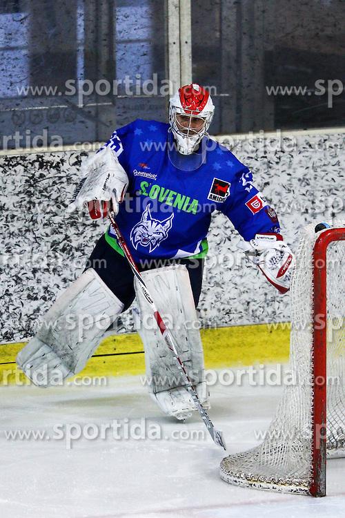 Robert Kristan of Slovenia during friendly ice hockey match between Slovenia and Croatia, on April 12, 2016 in Ledena dvorana, Bled, Slovenia. Photo By Matic Klansek Velej / Sportida